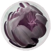 Queen Of The Night In Bloom Round Beach Towel