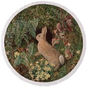 Rabbit Amid Ferns And Flowering Round Beach Towel