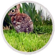 Rabbit As A Painting Round Beach Towel