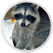 Raccoon1 Snack Bandit Round Beach Towel