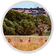 Nine Racing Whitetail Deer Round Beach Towel