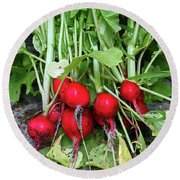 Radish Harvest Round Beach Towel