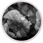 Rain Drops In The Morning Round Beach Towel
