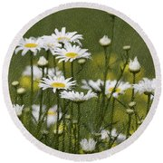 Rain Drops On Daisies Round Beach Towel