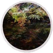 Rainbow Pickle Creek Reflections 6272 H_3 Round Beach Towel