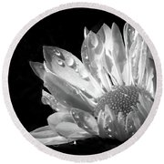 Raindrops On Daisy Black And White Round Beach Towel