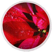 Raindrops On Red Poinsettia Round Beach Towel