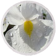 Raindrops On White Irises Flowers Sunlit Baslee Troutman Round Beach Towel