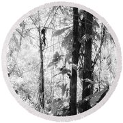 Rainforest Abstract Round Beach Towel