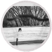 Ranch Horse In The Fields Round Beach Towel