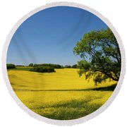 Rapeseed Field,west Sussex, England  Round Beach Towel