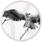 Raptor Elite Round Beach Towel