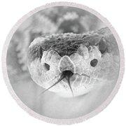 Rattlesnake Hello Round Beach Towel
