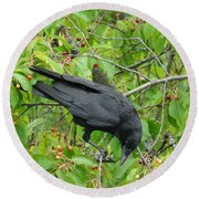 Raven In The Cherry Tree Round Beach Towel