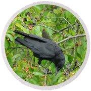 Raven In The Cherry Tree Round Beach Towel