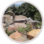 Reaching For Summits Round Beach Towel