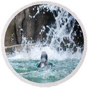 Rear View Penguin Round Beach Towel