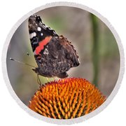 Red Admiral Butterfly On Coneflower              July              Indiana Round Beach Towel