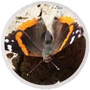 Red Admiral Close Round Beach Towel