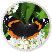 Red Admiral - Topwings Round Beach Towel