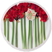 Red Amaryllis With Butterfly Round Beach Towel