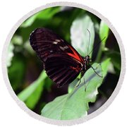 Red And Black Butterfly In The Garden Round Beach Towel