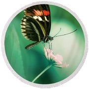 Red And Black Butterfly On White Flower Round Beach Towel