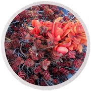Red And Burgundy Succulent Plants Round Beach Towel