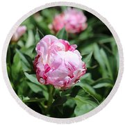Red And Pink Peony Round Beach Towel