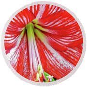 Red And White Beauty Round Beach Towel