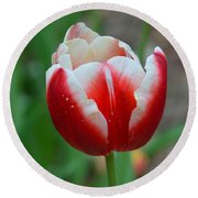 Red And White Bloom Round Beach Towel