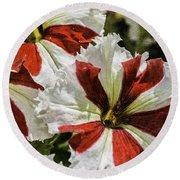 Red And White Petunia Round Beach Towel