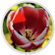Red And White Tulip Round Beach Towel
