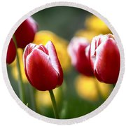 Red And White Tulips Large Canvas Art, Canvas Print, Large Art, Large Wall Decor, Home Decor Round Beach Towel