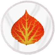 Red And Yellow Aspen Leaf 10 Round Beach Towel