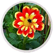 Red And Yellow Flower With Bee Round Beach Towel