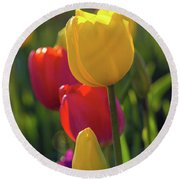 Red And Yellow Tulips Closeup Round Beach Towel
