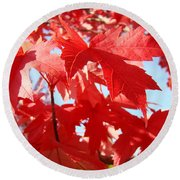 Red Autumn Leaves Art Prints Canvas Fall Leaves Baslee Troutman Round Beach Towel