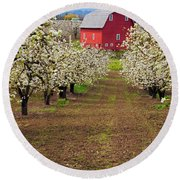 Red Barn Avenue Round Beach Towel by Mike  Dawson