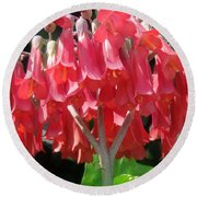 Red Bell Flowers. Sunny Spring Round Beach Towel