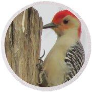 Red-bellied Woodpecker II Round Beach Towel