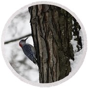 Red Bellied Woodpecker No 1 Round Beach Towel