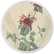 Red Bergamot In A Landscape, Aert Schouman Surroundings Of, C. 1750 - C. 1775 Round Beach Towel
