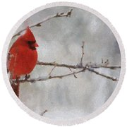 Red Bird Of Winter Round Beach Towel by Jeff Kolker