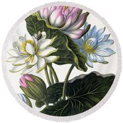 Red, Blue, And White Lotus Flowers Round Beach Towel