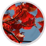 Red Brown And Blue Round Beach Towel