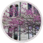 Red Buds And San Antonio City Hall Round Beach Towel