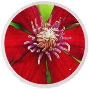 Red Clematis Round Beach Towel