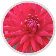 Red Dahlia Delight Round Beach Towel