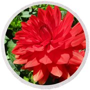 Red Dahlia In The Green Round Beach Towel